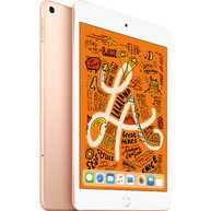 Máy Tính Bảng Apple iPad Mini 2019 5th-Gen 256GB 7.9-Inch Wifi Cellular Gold (MUXE2ZA/A)